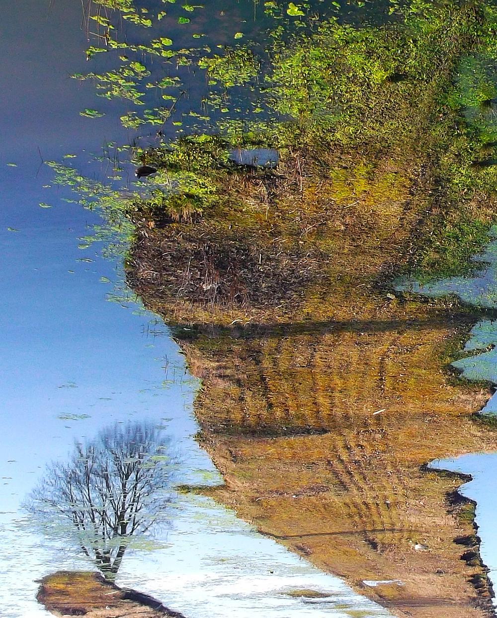 Iven Einszehn Foto Landschaft in Hammerbrook (zerstört)