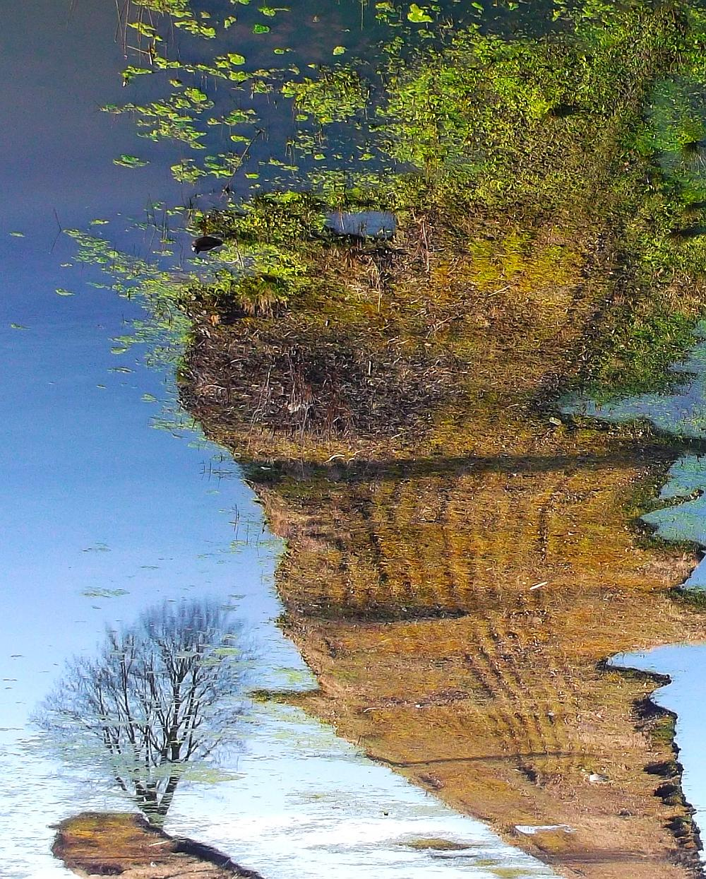 Iven Einszehn Foto Landschaft in Hammerbrook (zerst�rt)